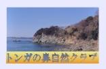 さんまや・雑賀崎の夕日・トンガの鼻自然クラブ